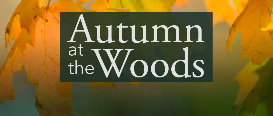 Join us for Autumn at the Woods!